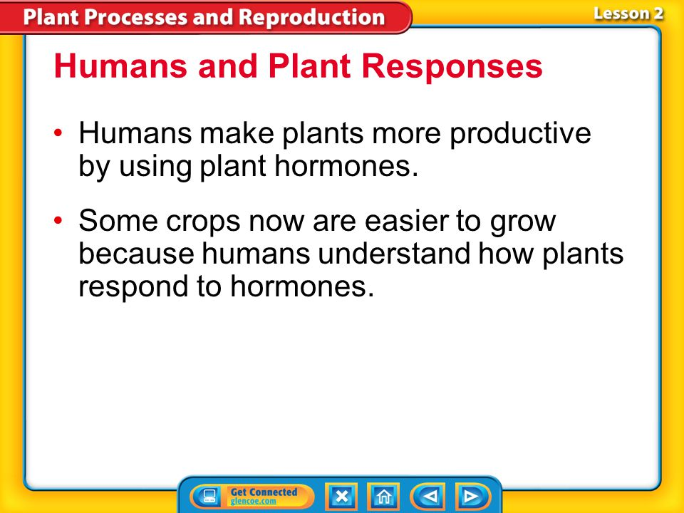 Humans and Plant Responses