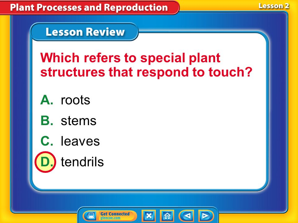 Which refers to special plant structures that respond to touch