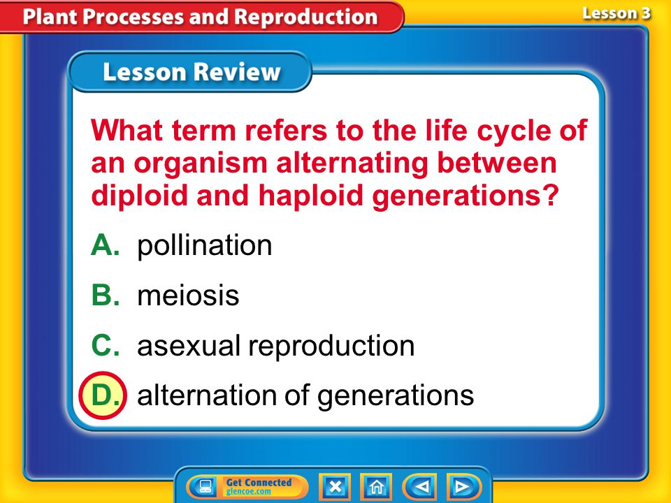 C. asexual reproduction D. alternation of generations