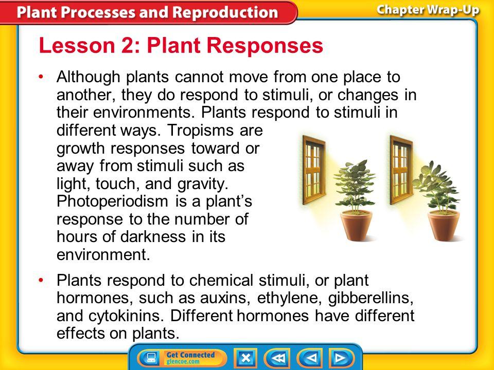 Lesson 2: Plant Responses