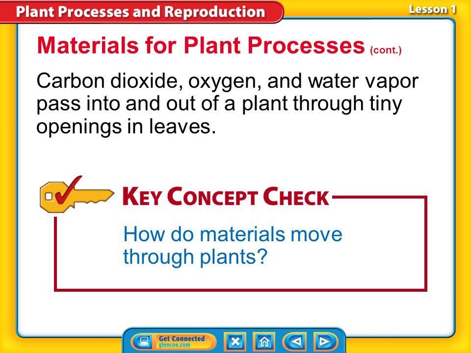 Materials for Plant Processes (cont.)