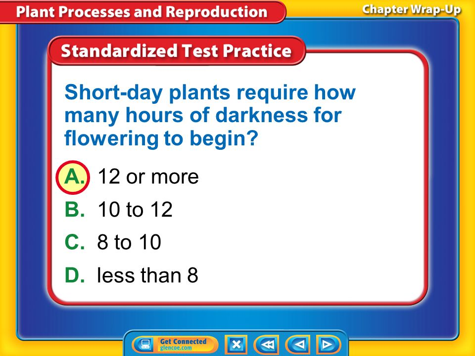 Short-day plants require how many hours of darkness for flowering to begin