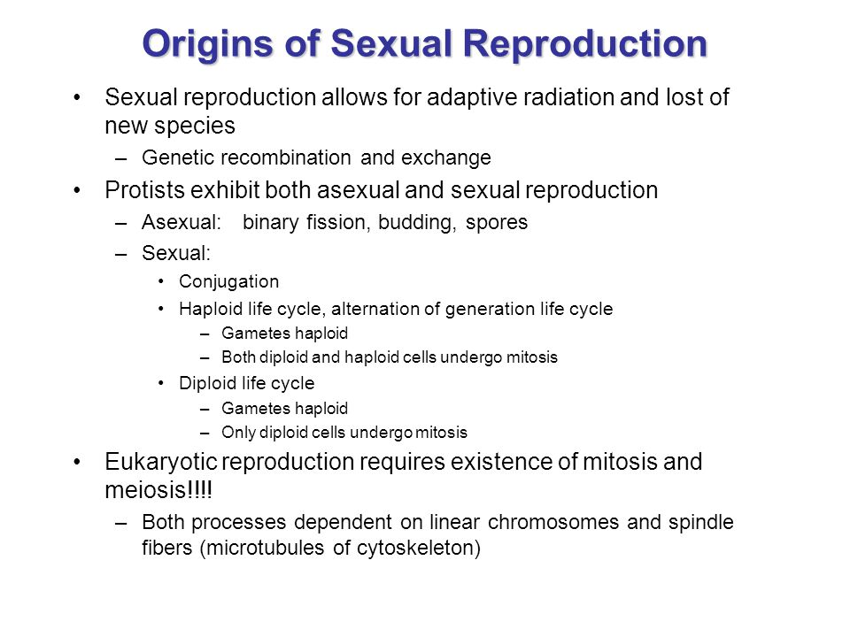 Origins of Sexual Reproduction