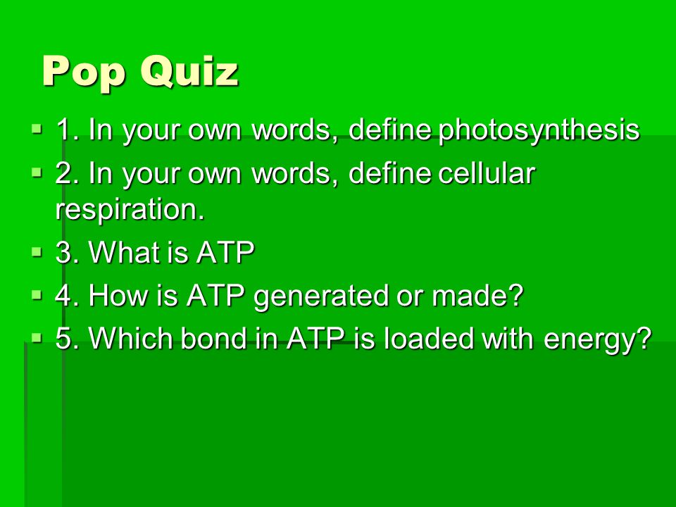 Pop Quiz 1. In your own words, define photosynthesis