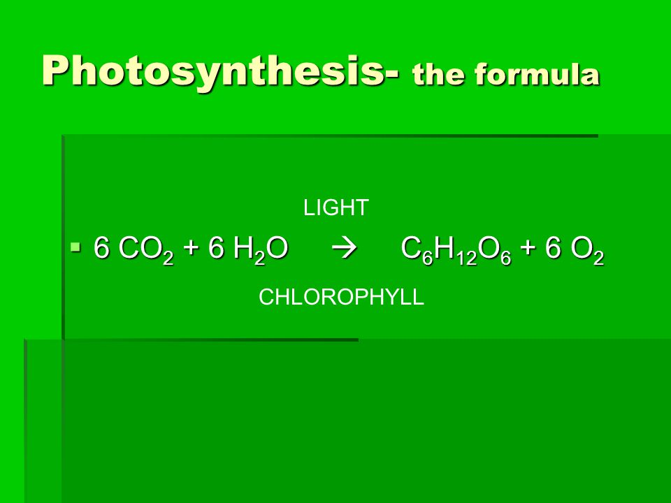 Photosynthesis- the formula