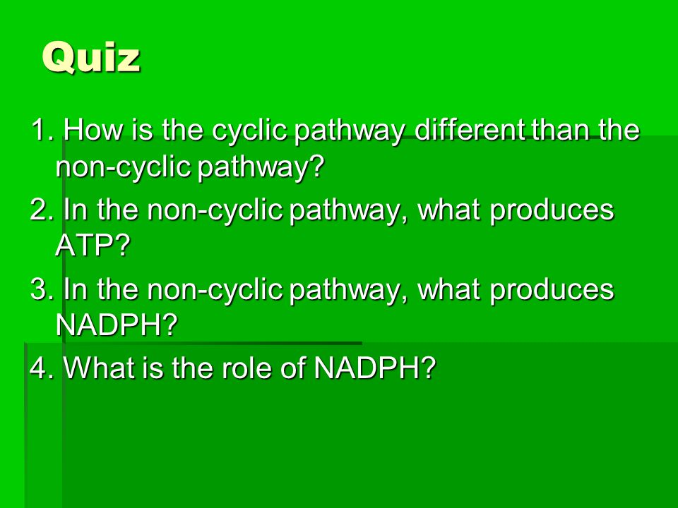 Quiz 1. How is the cyclic pathway different than the non-cyclic pathway 2. In the non-cyclic pathway, what produces ATP