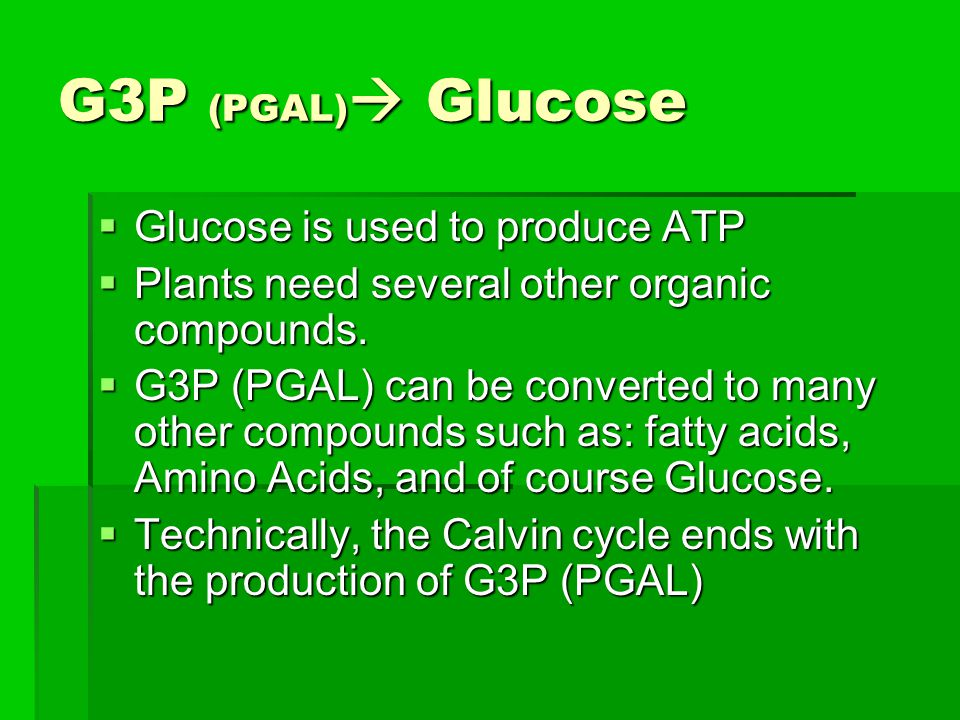 G3P (PGAL) Glucose Glucose is used to produce ATP