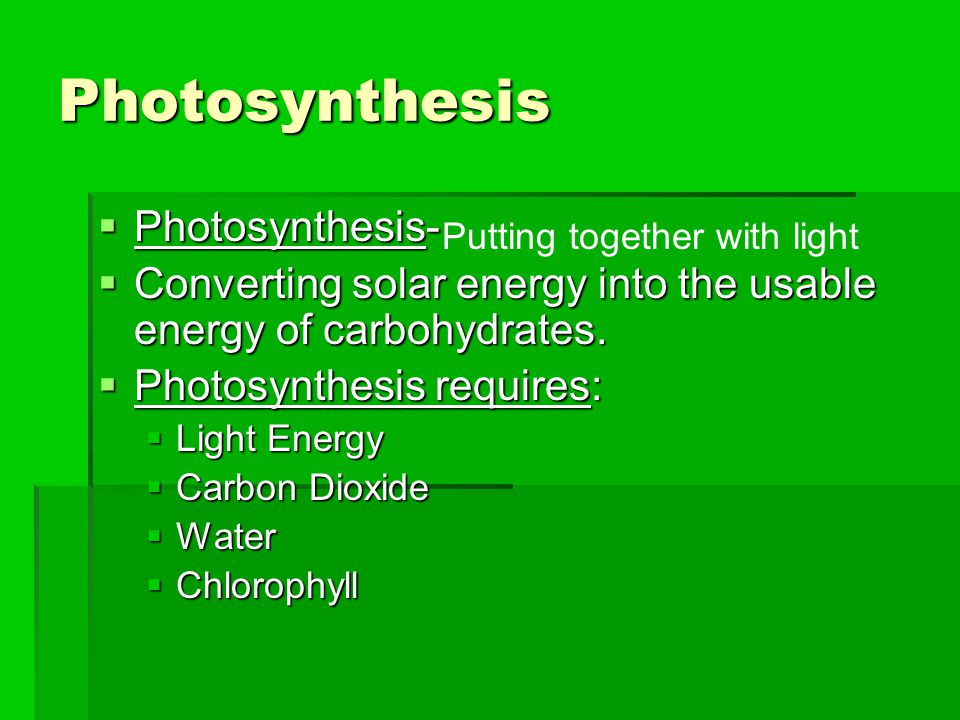 Photosynthesis Photosynthesis-