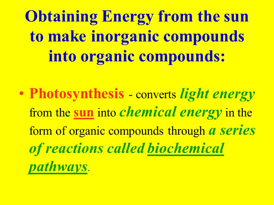 Obtaining Energy from the sun to make inorganic compounds into organic compounds:
