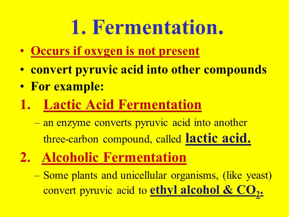 Photosynthesis & Cellular Respiration These processes are ...
