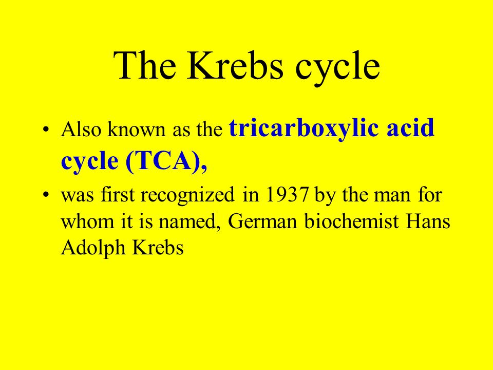 The Krebs cycle Also known as the tricarboxylic acid cycle (TCA),