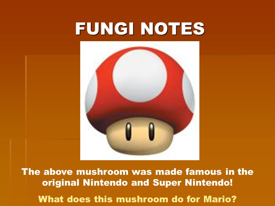 What does this mushroom do for Mario
