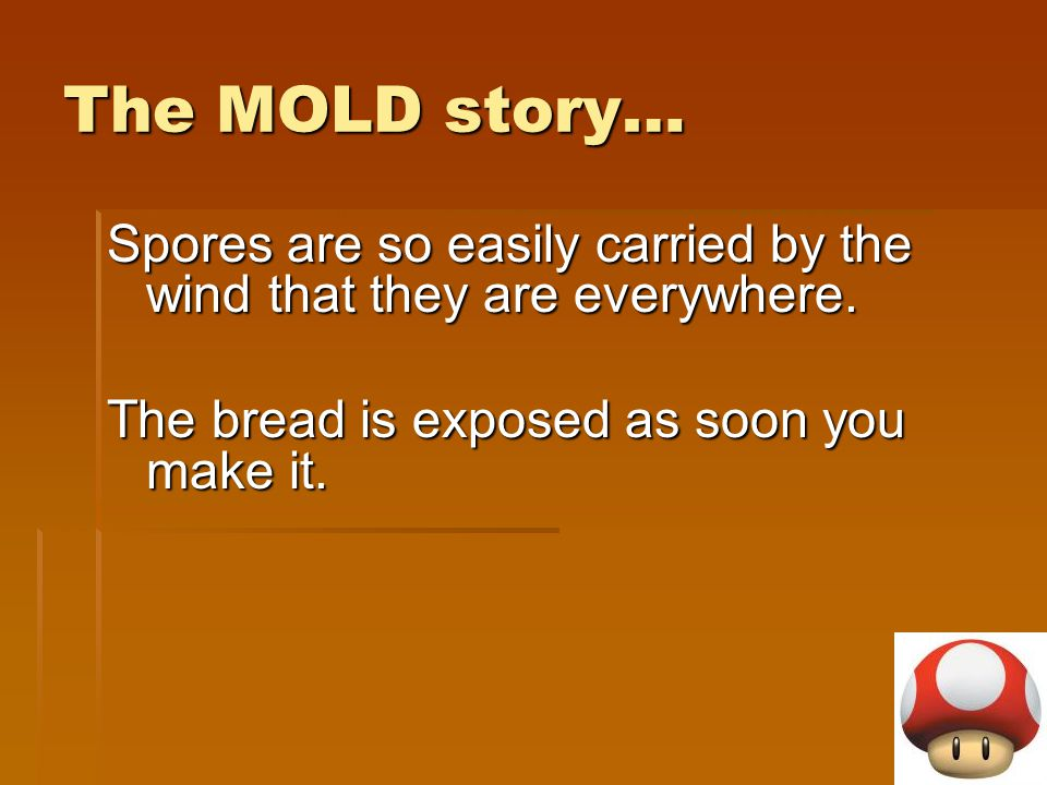 The MOLD story… Spores are so easily carried by the wind that they are everywhere.