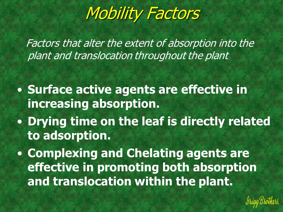 Mobility Factors Factors that alter the extent of absorption into the plant and translocation throughout the plant.