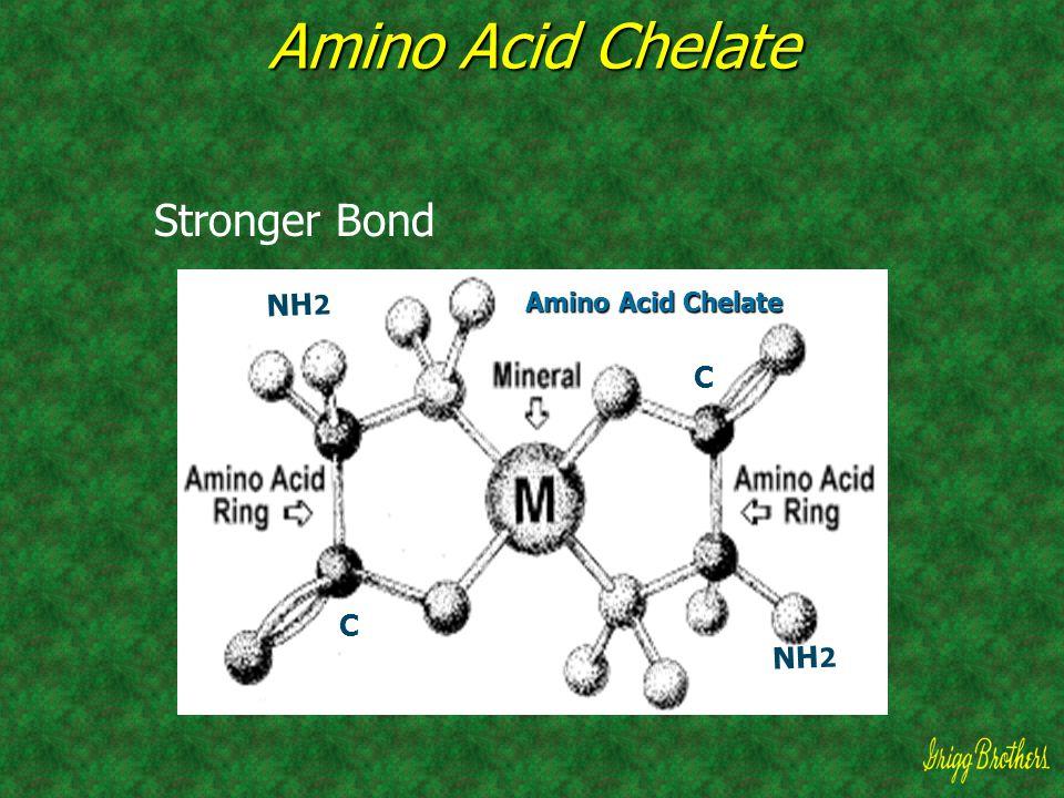 Amino Acid Chelate Stronger Bond Amino Acid Chelate NH2 C