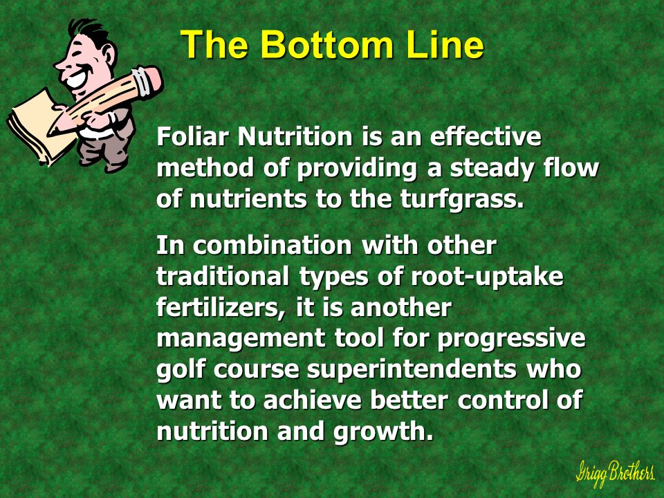 The Bottom Line Foliar Nutrition is an effective method of providing a steady flow of nutrients to the turfgrass.