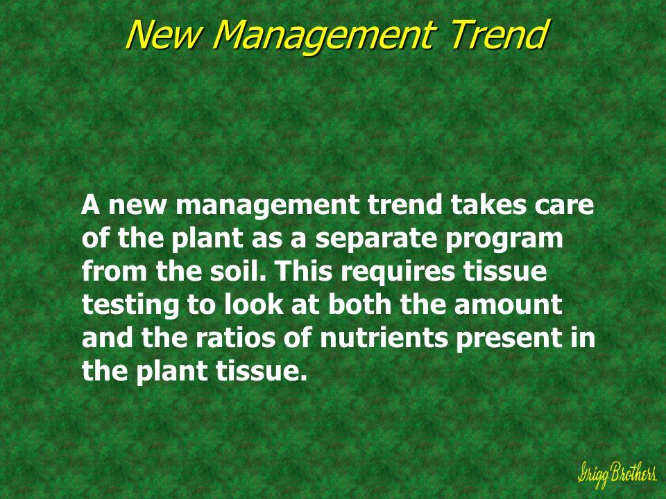 New Management Trend