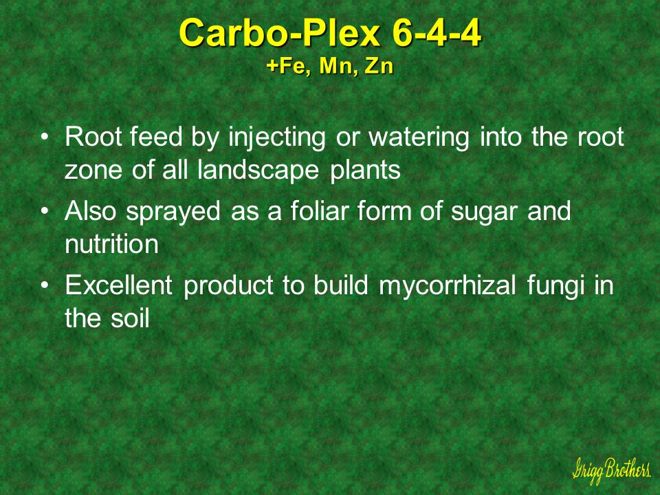 Carbo-Plex 6-4-4 +Fe, Mn, Zn Root feed by injecting or watering into the root zone of all landscape plants.