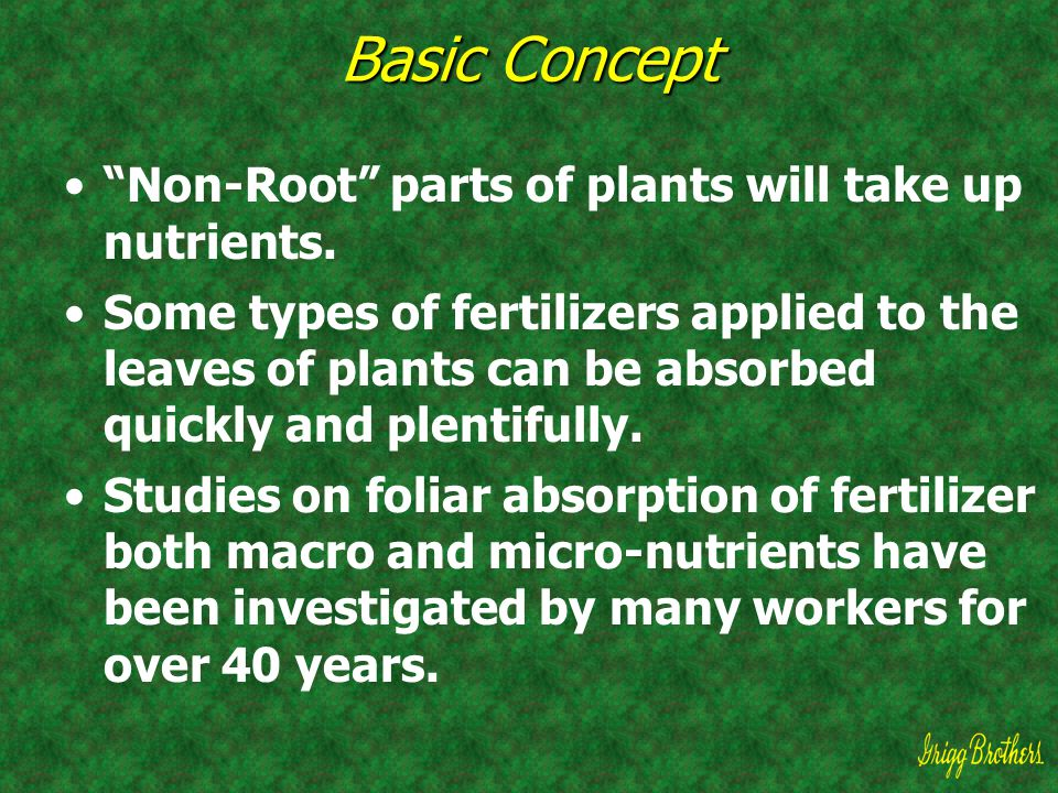 Basic Concept Non-Root parts of plants will take up nutrients.