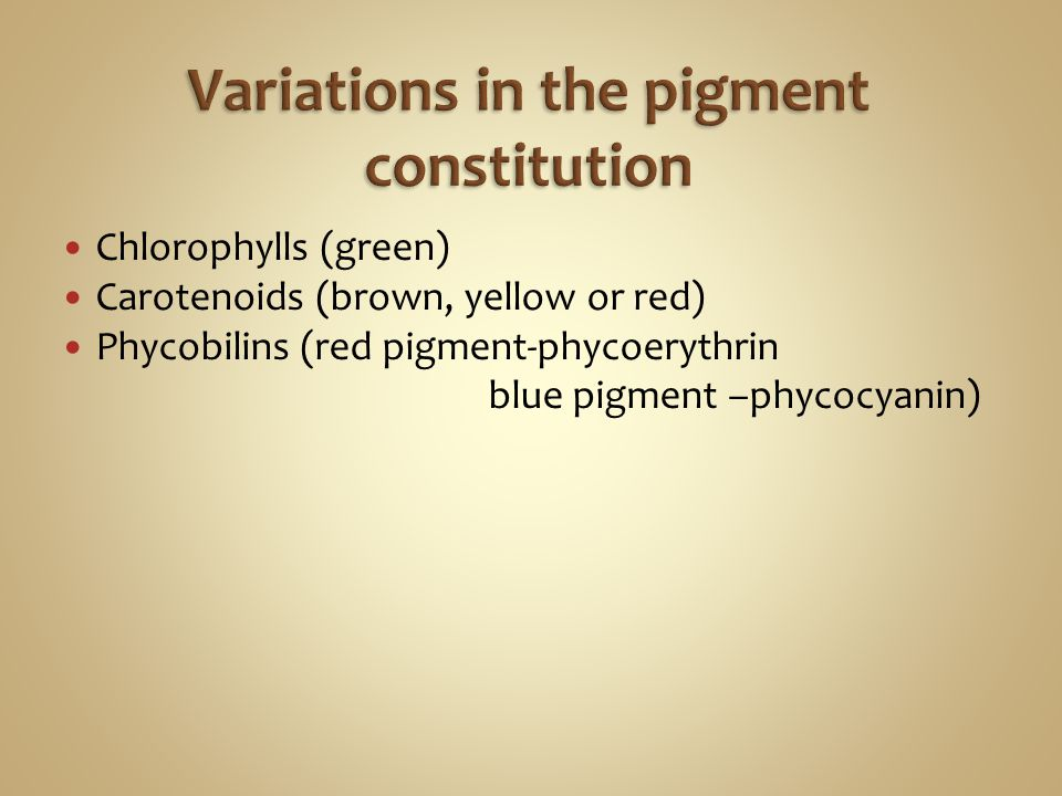Variations in the pigment constitution