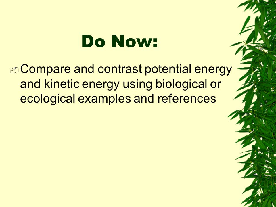 Do Now: Compare and contrast potential energy and kinetic energy using biological or ecological examples and references.