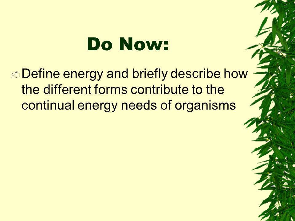 Do Now: Define energy and briefly describe how the different forms contribute to the continual energy needs of organisms.