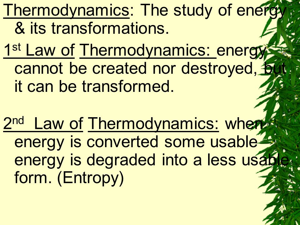 Thermodynamics: The study of energy & its transformations.