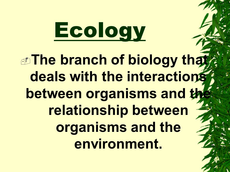 Ecology The branch of biology that deals with the interactions between organisms and the relationship between organisms and the environment.