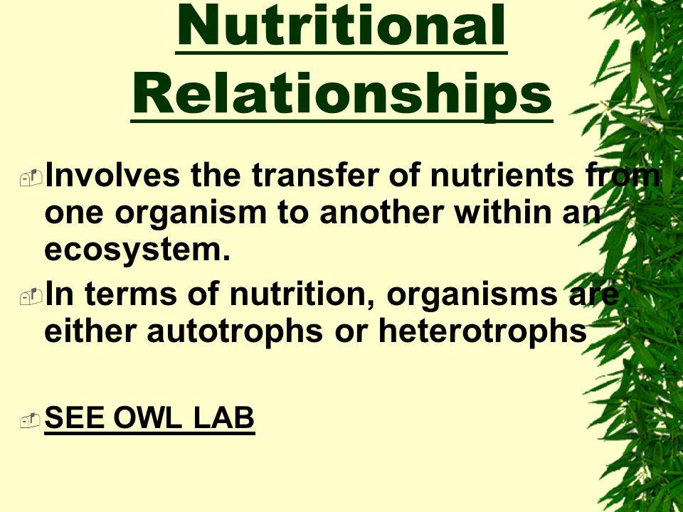 Nutritional Relationships
