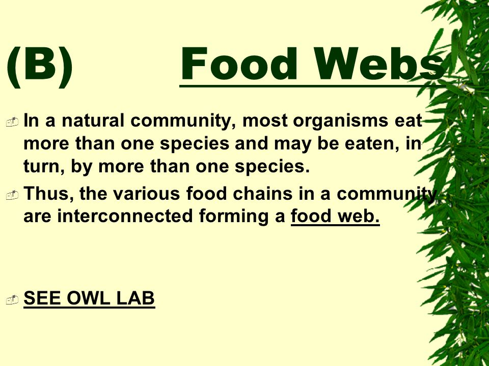 (B) Food Webs In a natural community, most organisms eat more than one species and may be eaten, in turn, by more than one species.