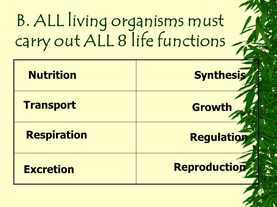 B. ALL living organisms must carry out ALL 8 life functions