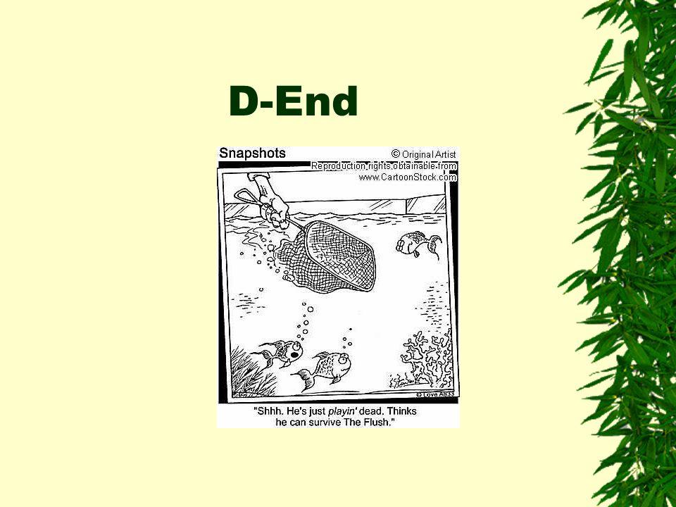 D-End
