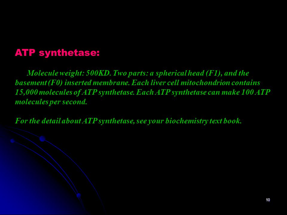 ATP synthetase: