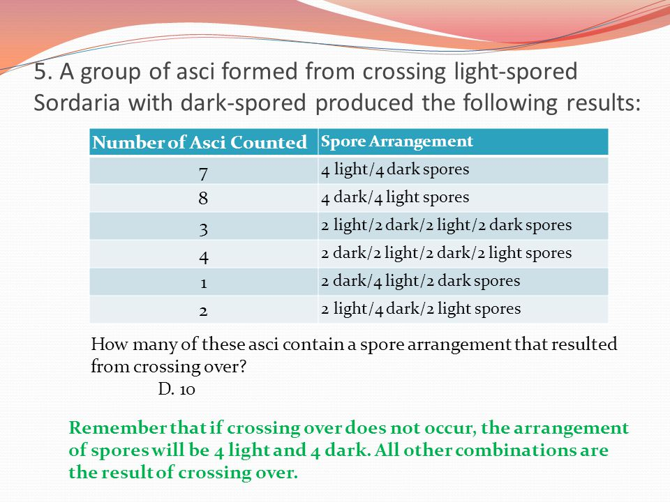 5. A group of asci formed from crossing light-spored Sordaria with dark-spored produced the following results: