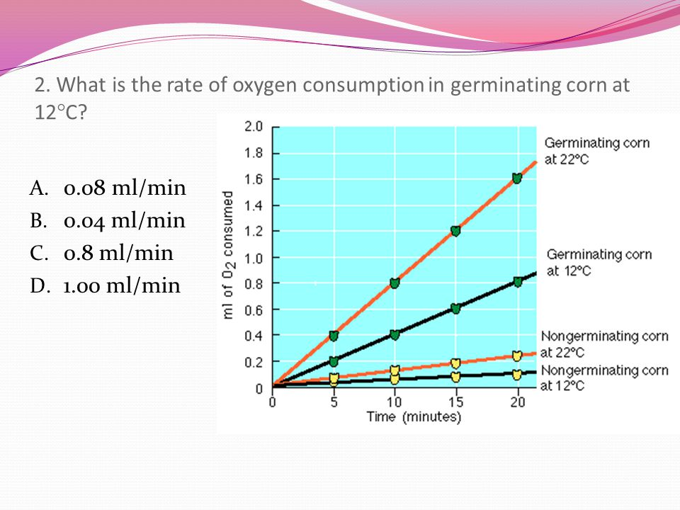2. What is the rate of oxygen consumption in germinating corn at 12C