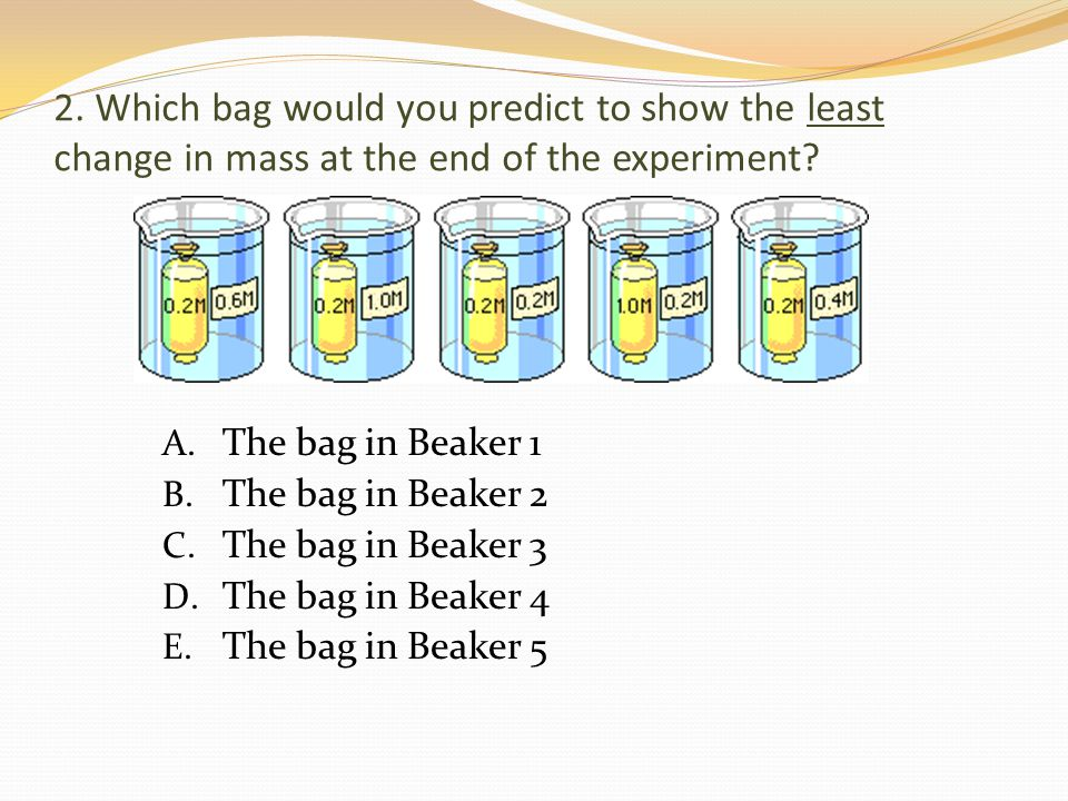 2. Which bag would you predict to show the least change in mass at the end of the experiment