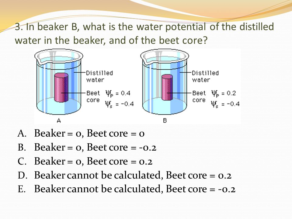 Beaker cannot be calculated, Beet core = 0.2