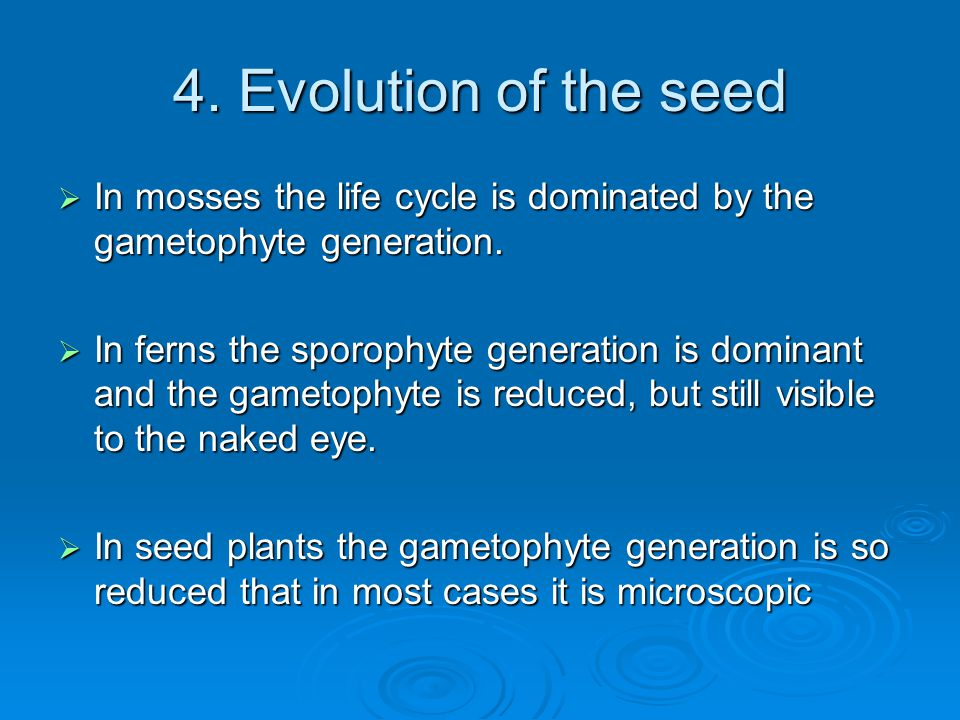 4. Evolution of the seed In mosses the life cycle is dominated by the gametophyte generation.