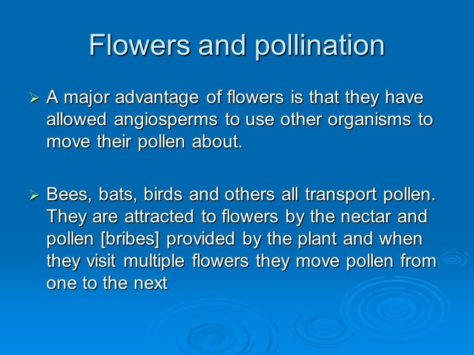 Flowers and pollination