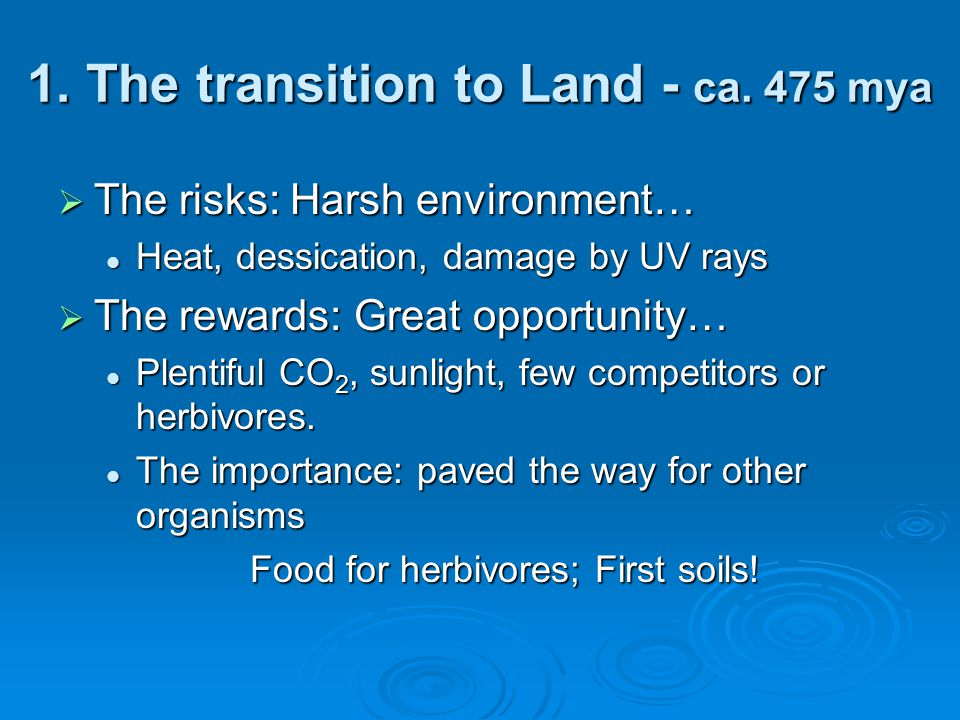 1. The transition to Land - ca. 475 mya
