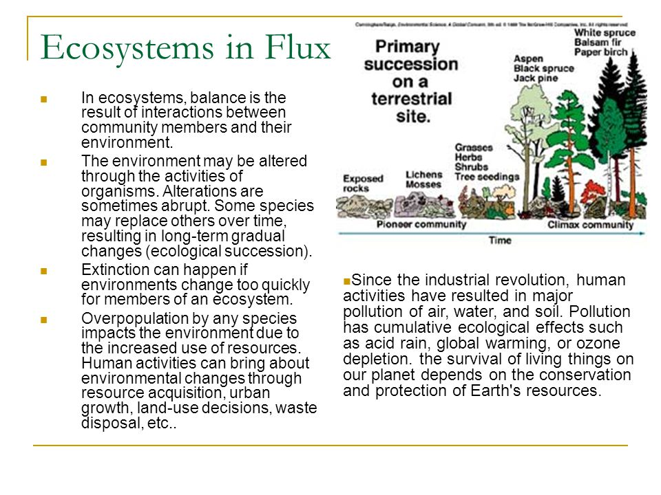 Ecosystems in Flux In ecosystems, balance is the result of interactions between community members and their environment.