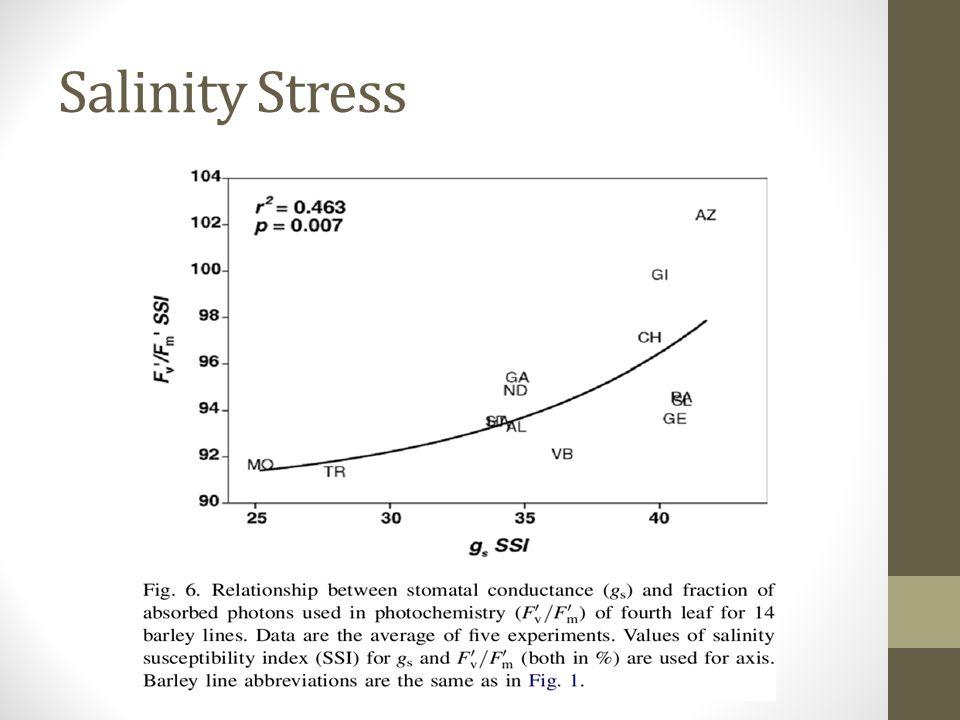Salinity Stress