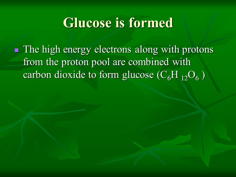 Glucose is formed The high energy electrons along with protons from the proton pool are combined with carbon dioxide to form glucose (C6H 12O6 )