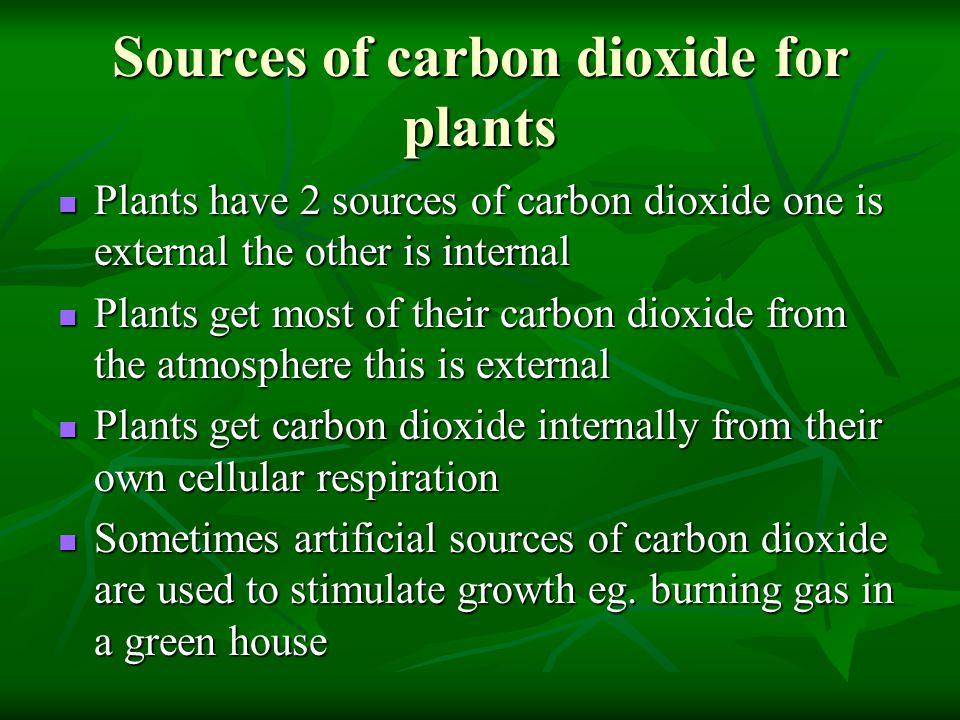 Sources of carbon dioxide for plants