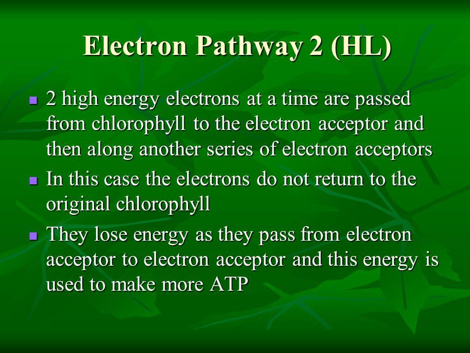 Electron Pathway 2 (HL)
