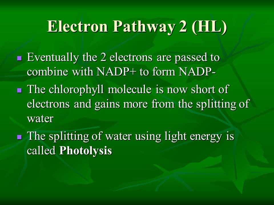Electron Pathway 2 (HL) Eventually the 2 electrons are passed to combine with NADP+ to form NADP-