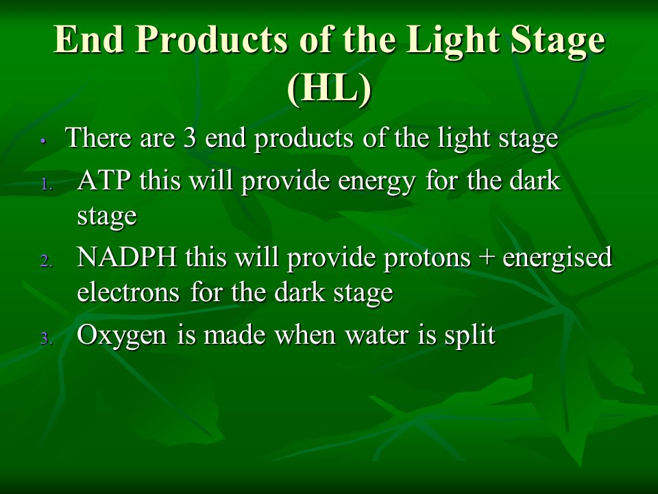 End Products of the Light Stage (HL)