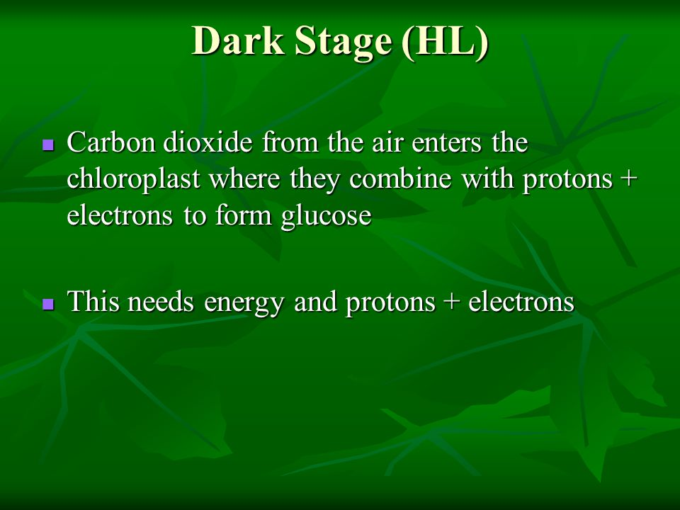 Dark Stage (HL) Carbon dioxide from the air enters the chloroplast where they combine with protons + electrons to form glucose.