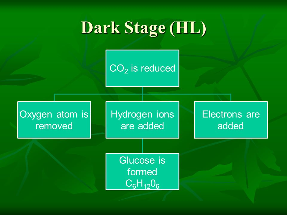 Dark Stage (HL) CO2 is reduced Oxygen atom is removed Hydrogen ions