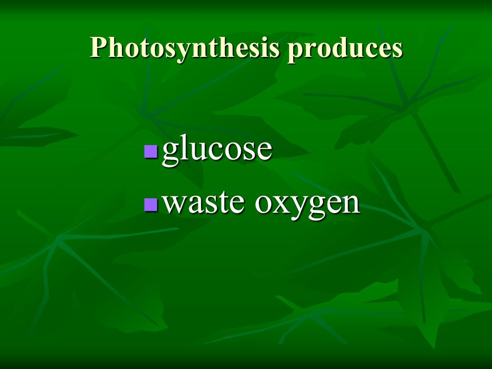 Photosynthesis produces